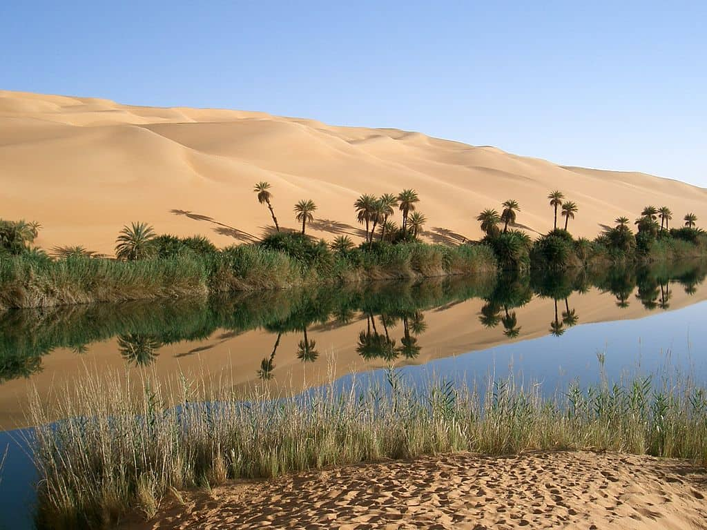 Writing Prompt 1/18/2020: The Oasis
